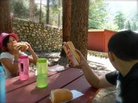 The Mt. Baldy Nature Center is a great place for a picnic in the cool shade of pine trees.