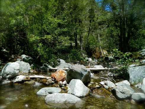 San Antonio Creek at Mt. Baldy is part of a vast network of headwaters that delivers water to millions of people living downstream.